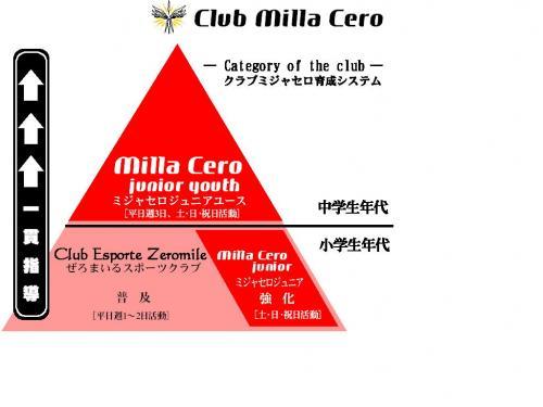 育成ピラミッド